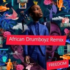 Zakes Bantwini - Freedom (African DrumBoyz Remix) ft Moonga K
